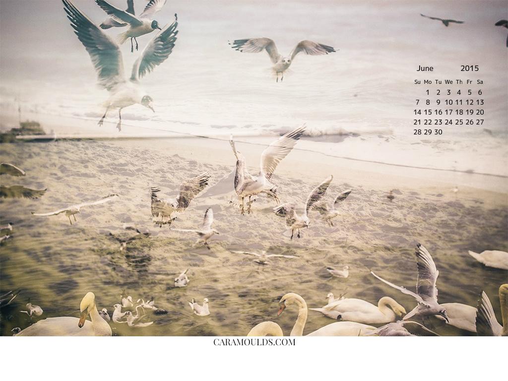 June 1024