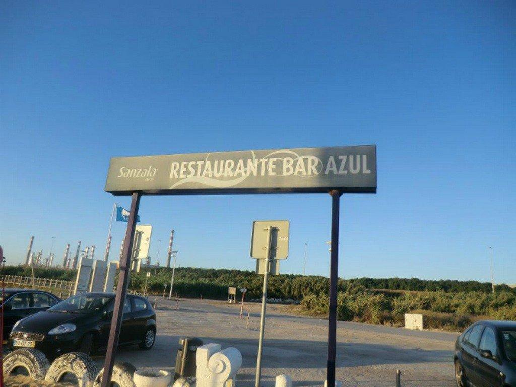 Os moluscos do Bar Azul