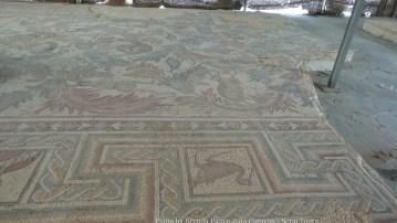 Mosaics found at Mt. Nebo