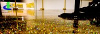 Carbolink's Gold/ Silver/ Other Metallic Epoxy Flooring ...