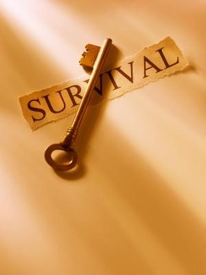 Are You A Low Carb Survivor?