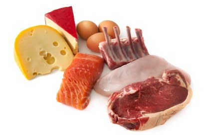 Can We Eat Only Protein?