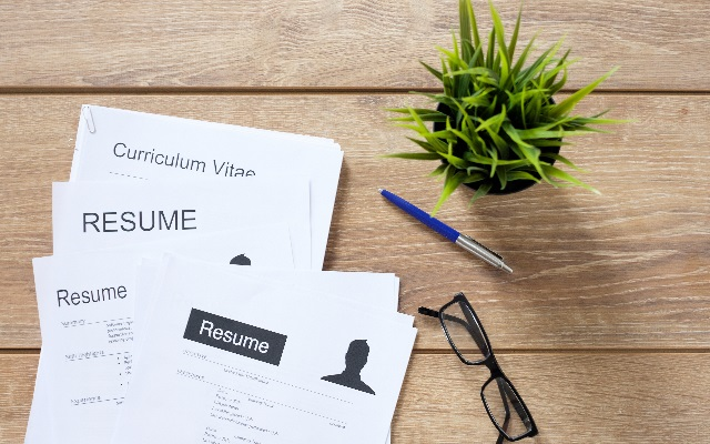 CV template Standard professional format - CareerOne Career Advice
