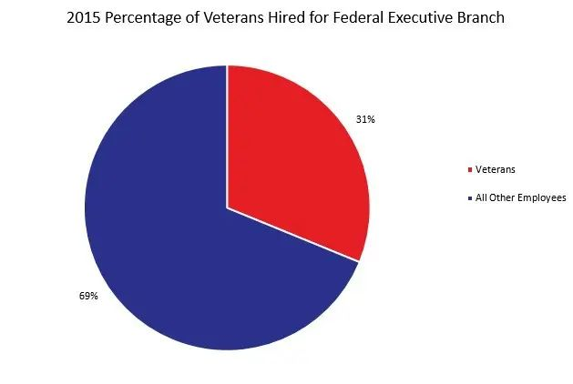 professional resume writers for veterans