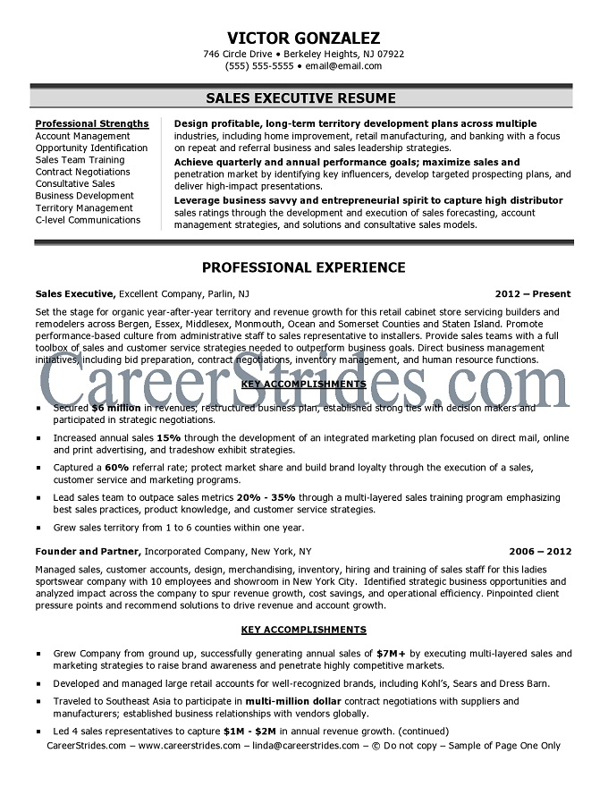 Doc.#600802: Sales Executive Resume Samples ? Resume Sample 13