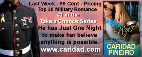 Just One Night Erotic Military Romance