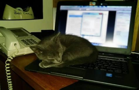 Slate on Hubby's computer