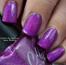 Colors by Llarowe Rare Orchid