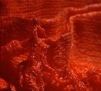 rouge-carolinepandele
