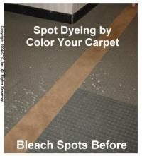 CARPET DYEING - Bleach Spots- ACTUAL SAMPLES #4 by Color ...