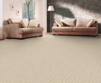 Carpet Cleaning Rite | Helping find the best carpet cleaners