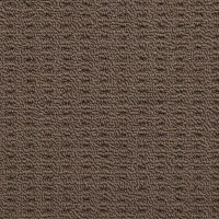 Nevada Sands (Modern and Affordable) - Products | Carpet ...