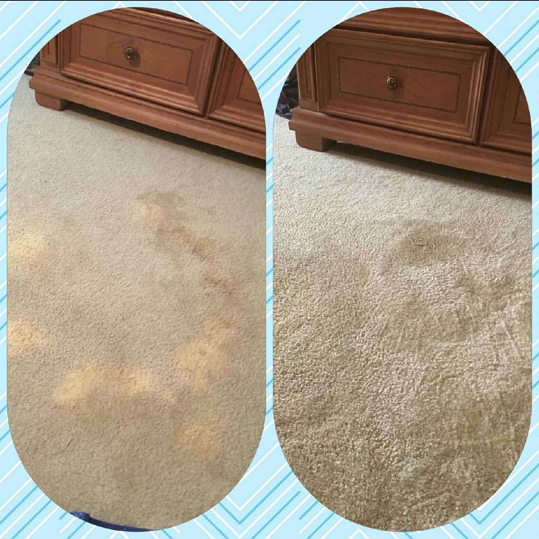 Bleach Damaged Stain Recolor Carpet Repair Carpet Dye