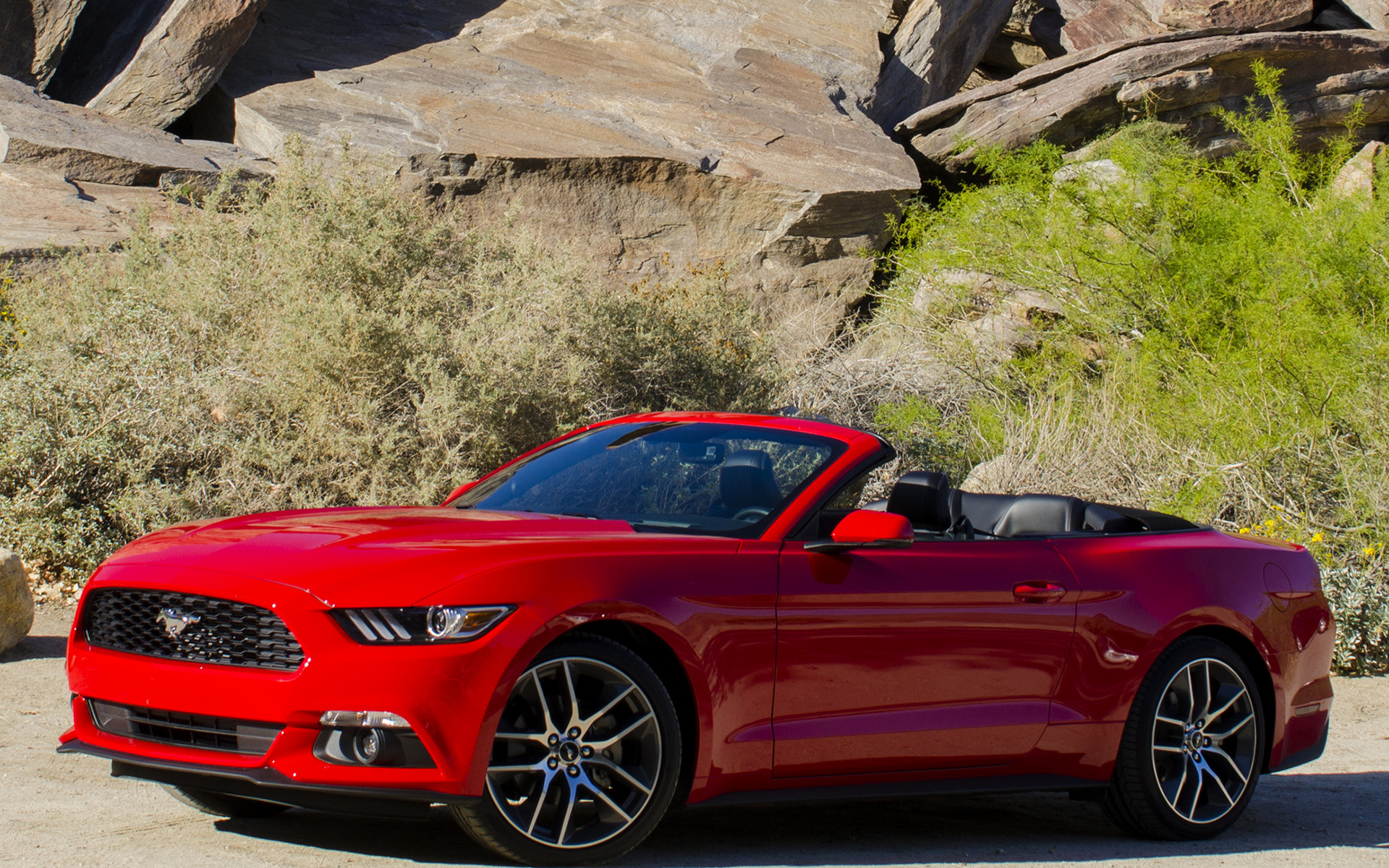 Mustang Car Wallpaper Desktop 2015 Ford Mustang Ecoboost Convertible Wallpapers And Hd