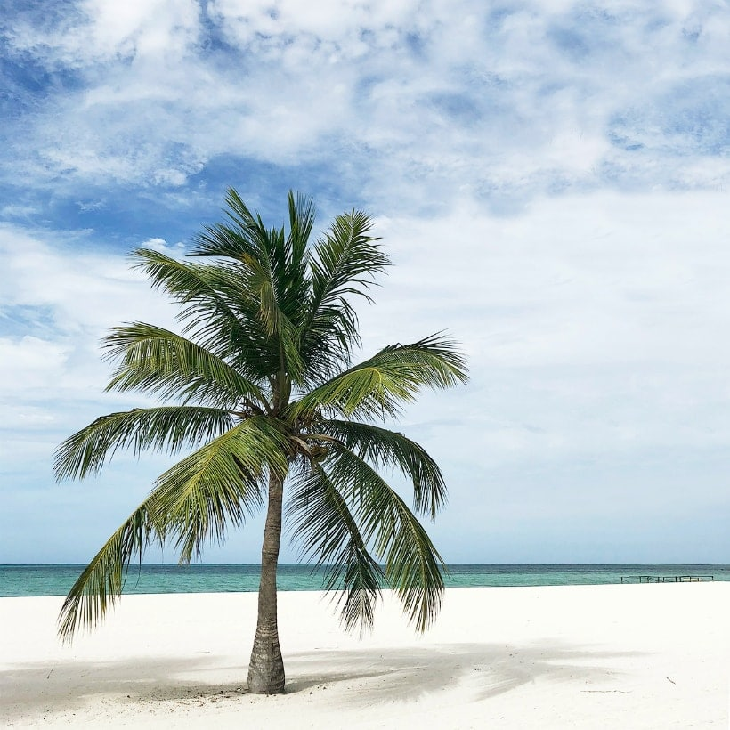 How I Stuck to my Budget on Vacation - Carrie Elle