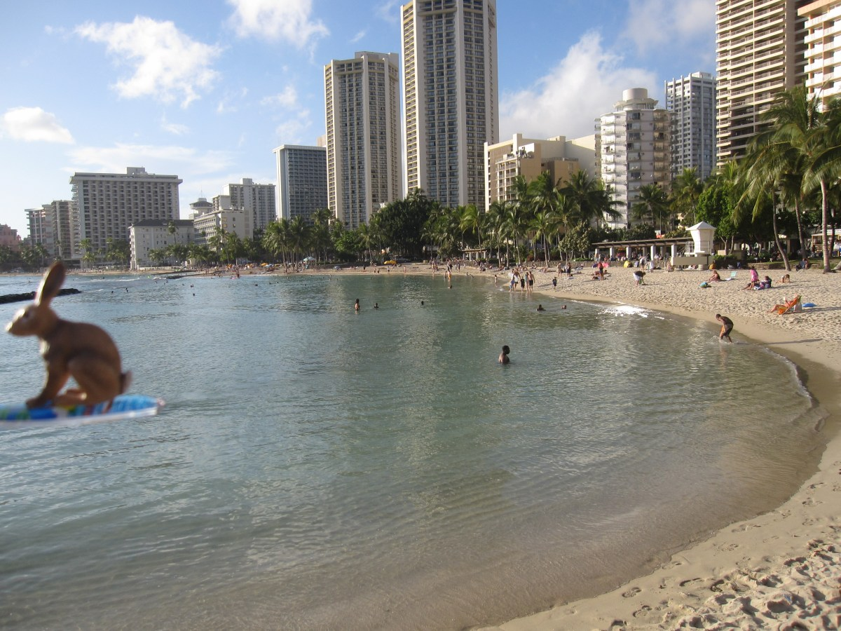 Surfen in Honolulu