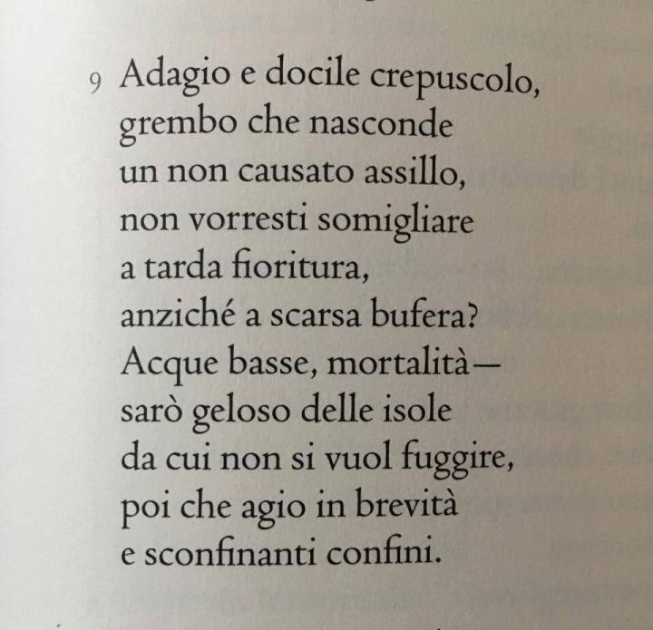 nanni-cagnone