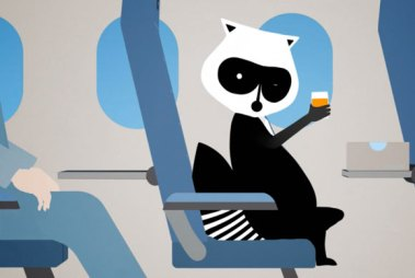 porter_airlines_raccoon