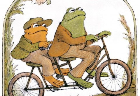 frogtoad1