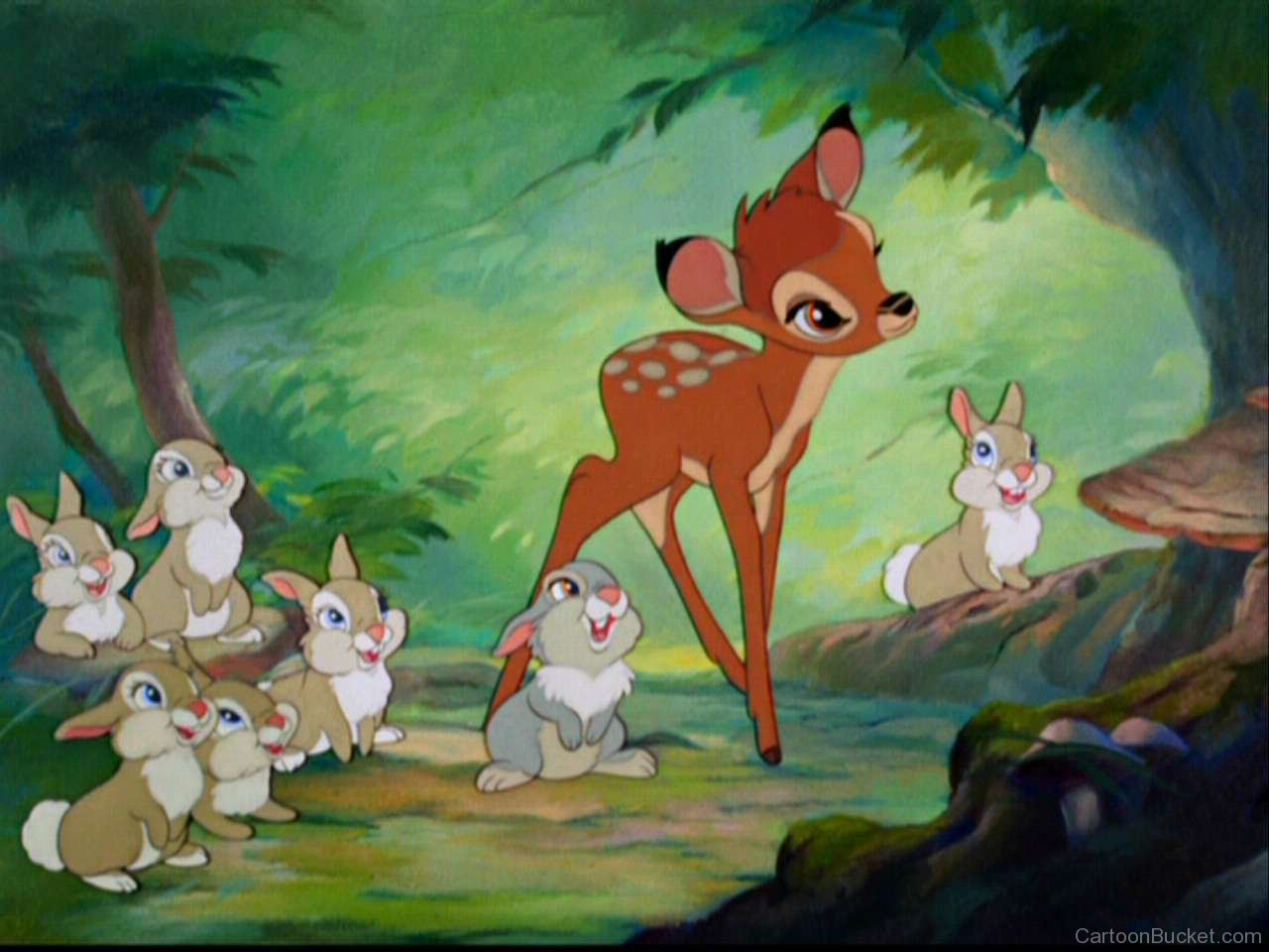 Cute Fish Wallpaper Hd Bambi Pictures Images Page 4