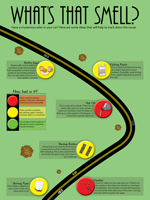 Whats-That-Smell-Infographic_150x200.jpg