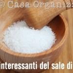 5 idee interessanti per usare il sale inglese o sale di Epsom