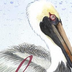 Casart coverings Element: Pelican no. 2 – Gulf Coast Design water & wording_4