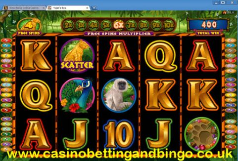 Tigers Eye Slot Machine - Free Spins Feature