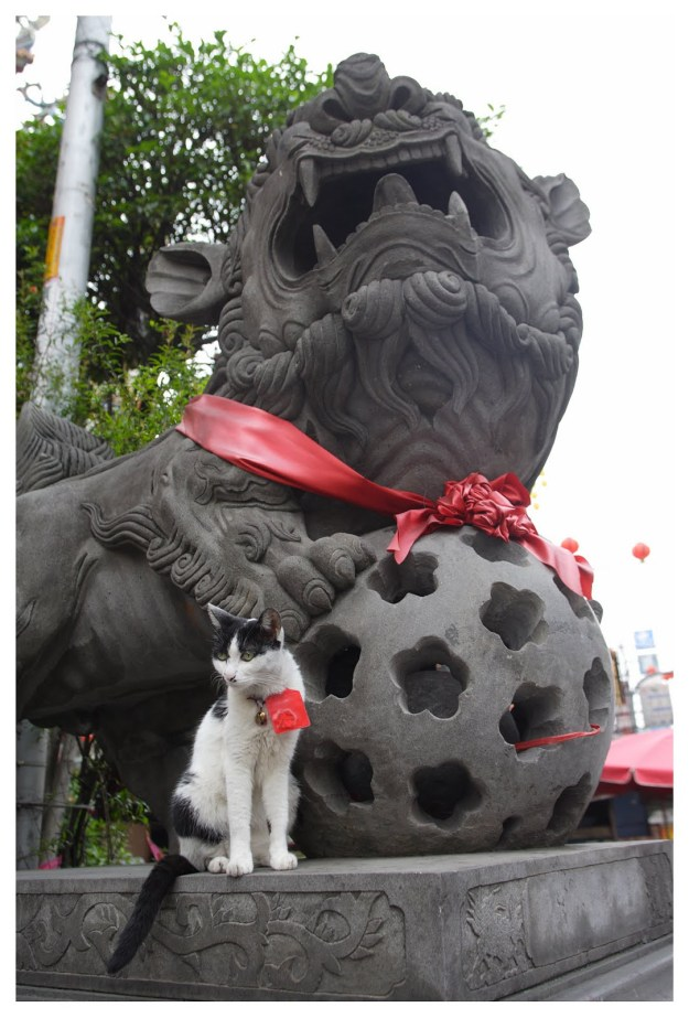 A black and white cat posing in front of a statue in Taiwan.