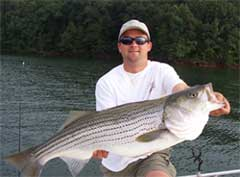 Lake Lanier Guide