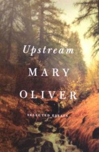 oliver-essays