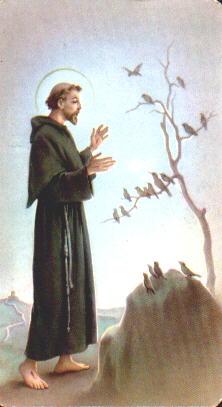 St. Francis of Assisi - Saints & Angels - Catholic Online