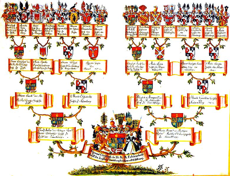 Catholic Bible 101 - Healing Your Family Tree
