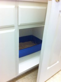 Where to Put Your Cats Litter Box - Catster
