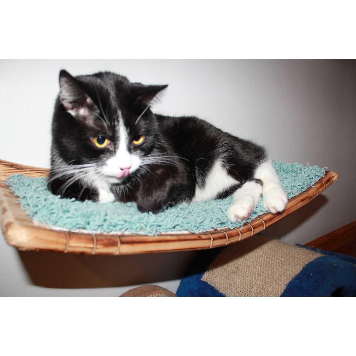 Wall Mounted Curvy Cat Shelf