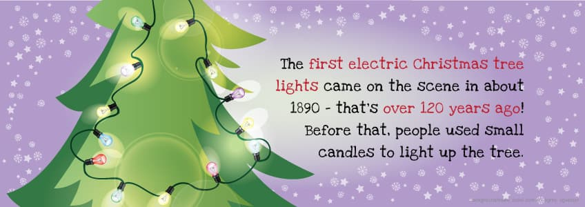 6 Things You Probably Didnt Know About Christmas Trees
