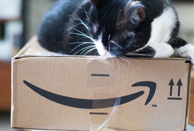 Amazon box and a cat