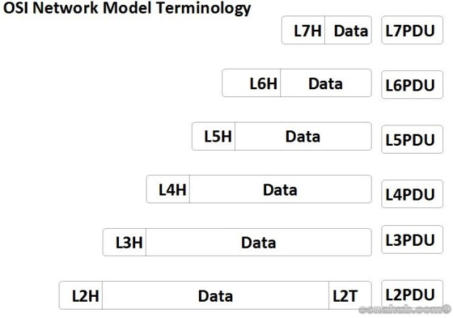 watermarked OSI Model Understanding TCP/IP and OSI Models