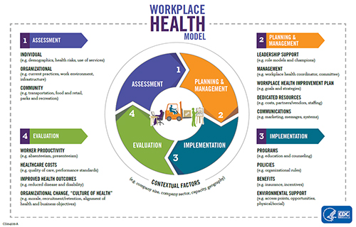 Workplace Health Model Workplace Health Promotion CDC - health components