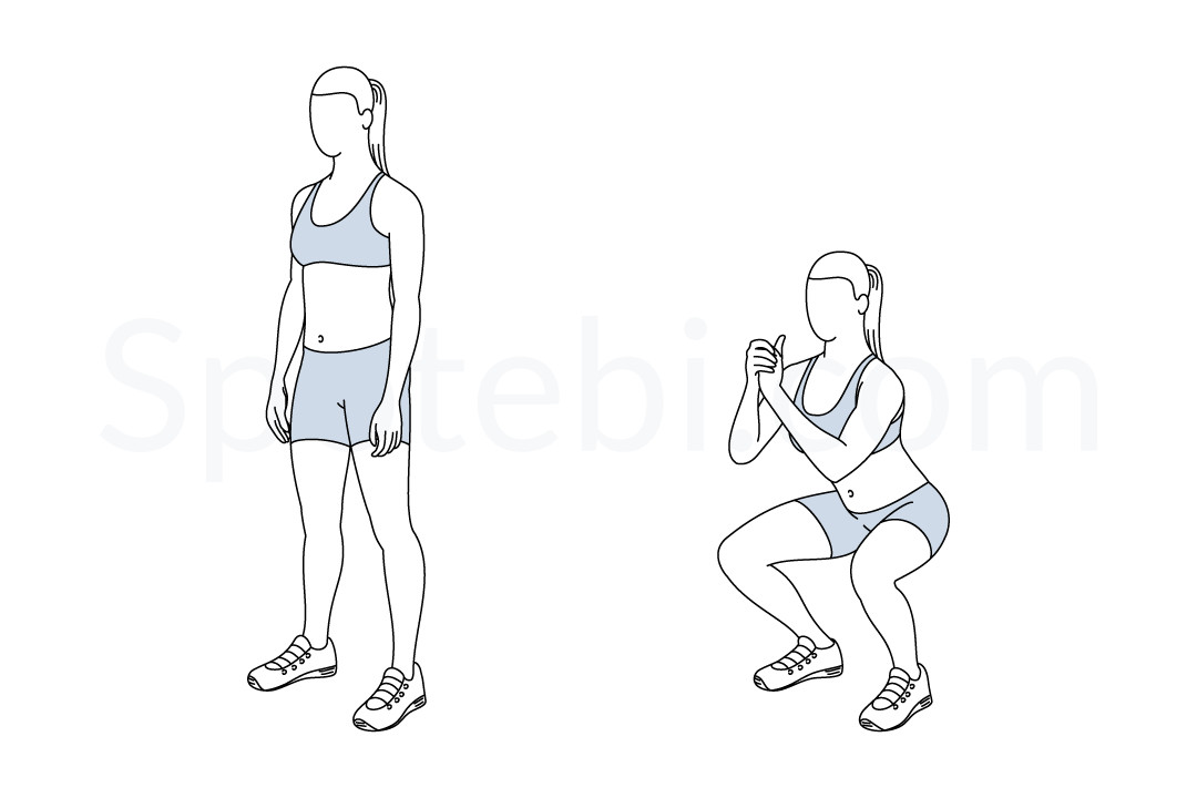 Squat Illustrated Exercise Guide