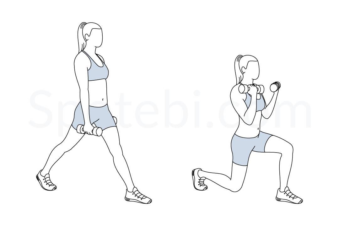 Split Squat Curl Illustrated Exercise Guide