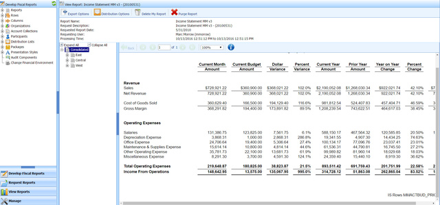 ReportFYI Smart Financial Report Writer CDP Inc - Project