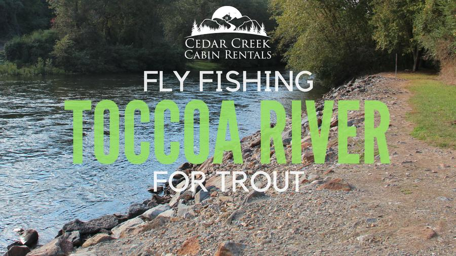Fly Fishing The Upper  Lower Toccoa River For Trout