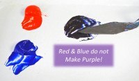 Red and Blue Don't Make Purple!  Celebrating Color