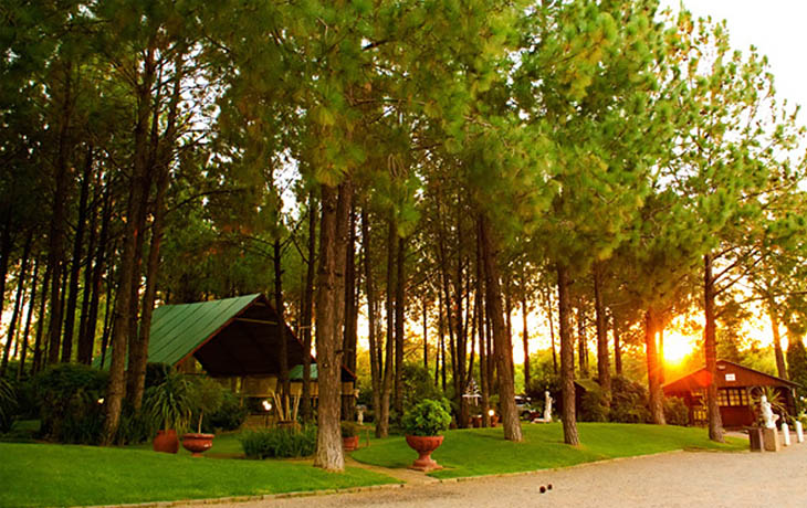Gauteng Wedding Venues The Forest Walk Venue