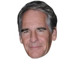 A Cardboard Celebrity Mask of Scott Bakula