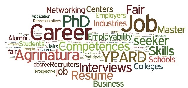 what is the best job search website