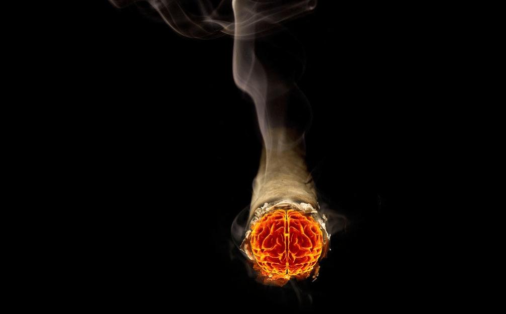 Falling Money Hd Wallpaper Cigarette Bonds Burn Up Centives