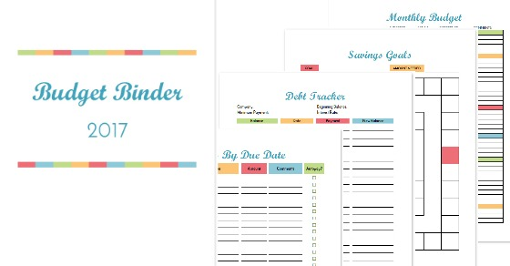 Budget Binder Printable How To Organize Your Finances - budget trackers