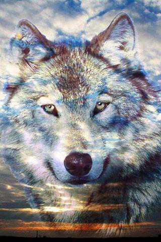 3d Wallpaper Apk Download 3d Wolf Kurt Duvar Kağıtları 187 Apk Oyun Ve Uygulama